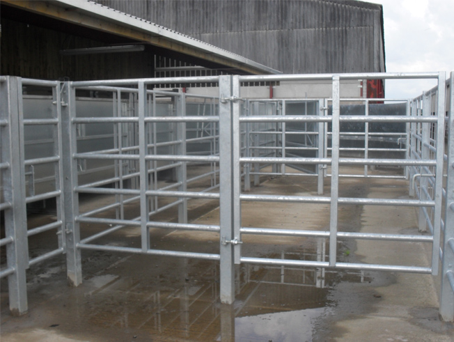 livestock handling pen fabrication services